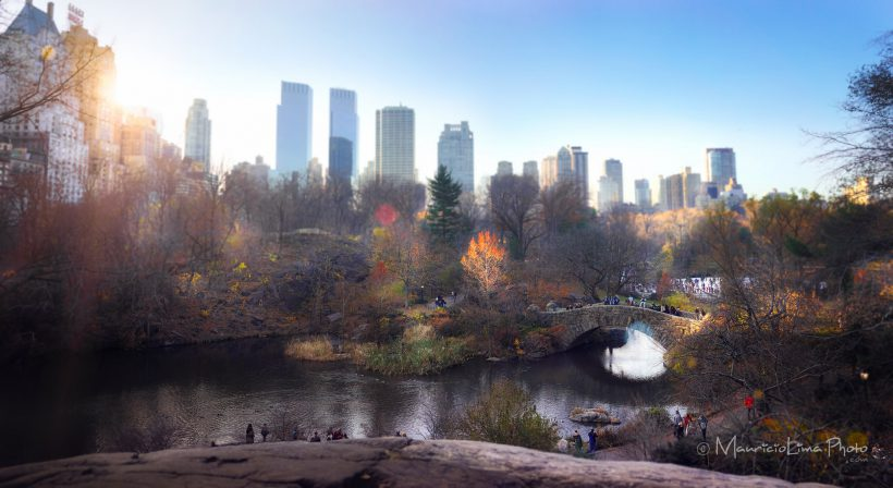 """New York City Central Park Classic View"" photo by Lima Pix"